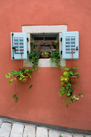 Small Window with Green Plants in Croatia