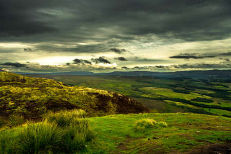 Scenic Landscape With Green Pastures And Forests At Loch Lomond In Scotland