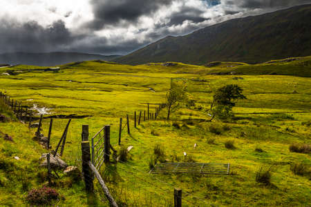 Green Fresh Pasture With Iron Fence On Isle Of Skye In Scotland Reklamní fotografie