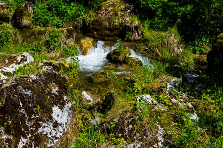 Clear Mountain Creek With Freshwater Over Rocks And Vegetation