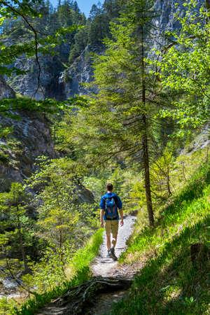 Young Man Walks On Hiking Trail In Ötschergräben In Austria Banco de Imagens
