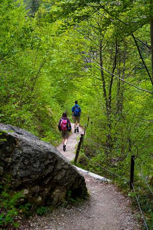 People Walk On Forest Hiking Trail In Ötschergräben In Austria