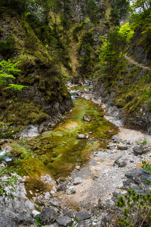 Clear And Wild Mountain River In Green Canyon In Ötschergräben In Austria
