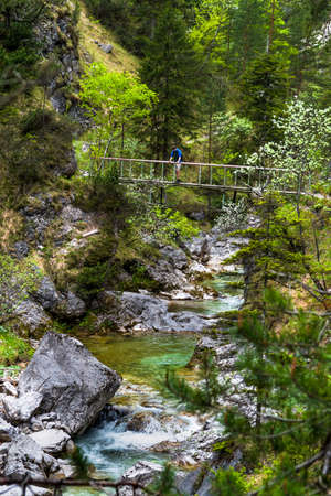 Young Man Stands On Bridge Over Clear And Wild Mountain River In Green Canyon In Ötschergräben In Austria