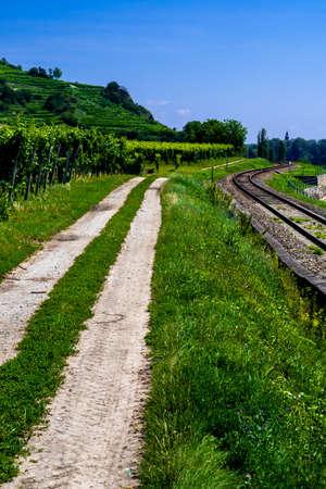 Gravel Road And Tracks Of A Railroad Beneath Vineyard