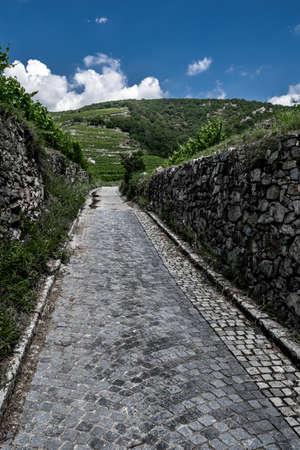 Narrow Cobblestone Road Between Stone Walls To Hil With Vineyard Terraces In Wachau Danube Valley In Austria Reklamní fotografie