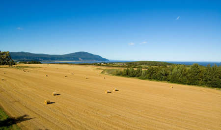 Panoramic view of a field on Orlean Island during harvest time autumn.