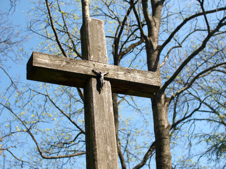 narew: Cross in Narew