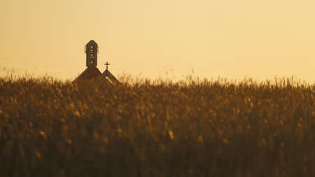 Church at background of a field with wheats Stock Photo
