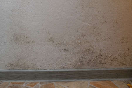 Mold and dirt and fungus growing on the corner of the wall near the floor. Difficult to remove dirt. Stock Photo