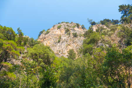 Steep and rocky hills covered with coniferous forest in the Turkish national park. Prak is located in the vicinity of Kusadasi and is called Milli Park. Stok Fotoğraf