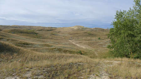 View of the dunes in Nida, Neringa in Lithuania. A popular travel destination in Europe in Lithuania.
