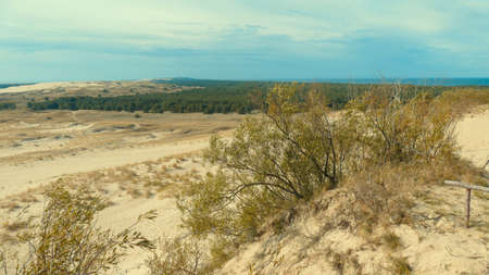 View of the dunes in Nida, Neringa in Lithuania. A popular travel destination in Europe in Lithuania. Beaches and huge dunes covering the end of the Curonian spit are included in the UNESCO World Heritage list due to their uniqueness.