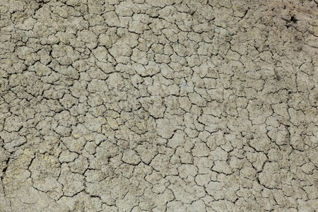 Close up of cracked earth of dried up stream bed photo