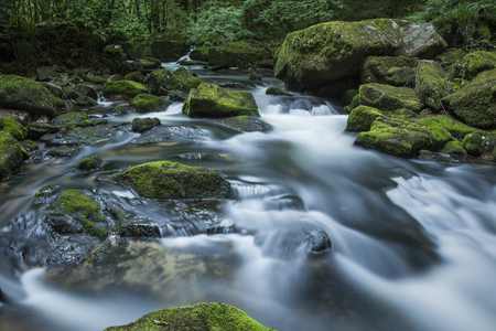 cornwall: Golitha Falls on the River Fowey, Cornwall, England Stock Photo