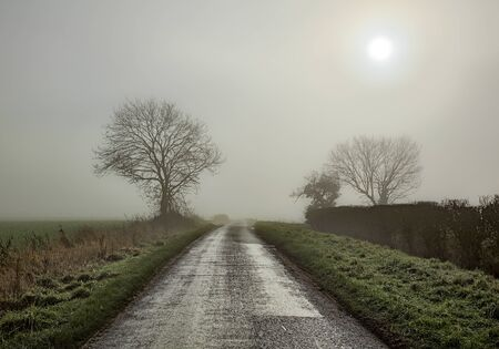 Country road in fog with sun showing through