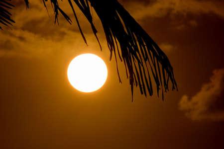 sunrise in Barbados photo