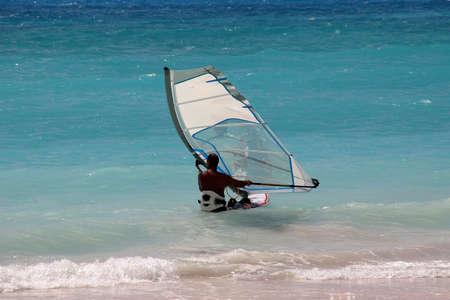 barbados: a windsurfer off the coast of Barbados