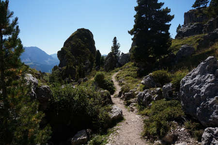 Idyllic trail in puez geisler nature park in the dolomites