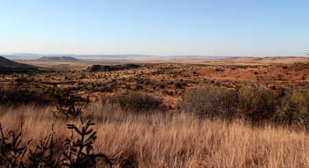 Beautiful and wide landscape in Big Bend National Park, Texas
