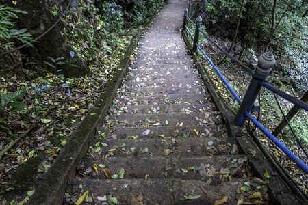 Old stone staircase with metal railing in the jungle
