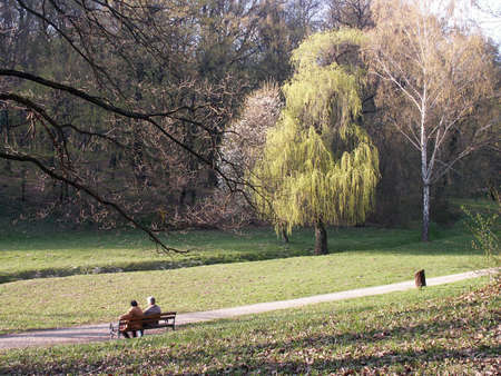 scenery from the public park in springtime