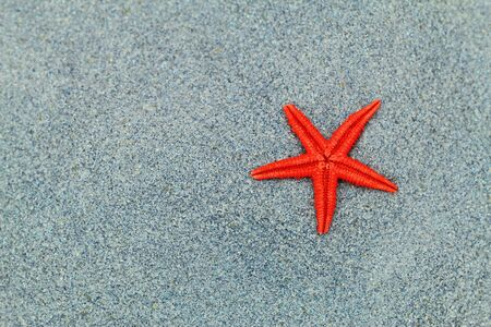 Red starfish on blue crystal sand Stock Photo - 18852669