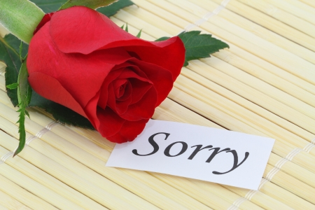 apology: Sorry note with red rose