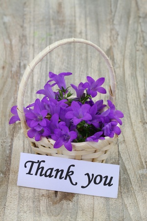 thanking: Thank you note and Campanula bell flowers in wicker basket