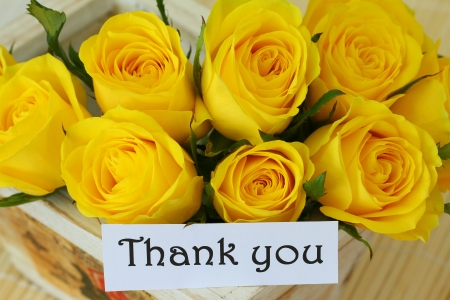 thank you note: Thank you note with yellow roses
