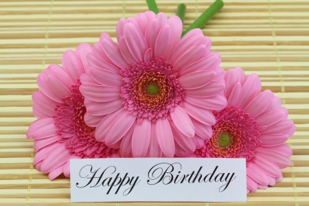 Happy birthday card with pink gerbera daisies photo