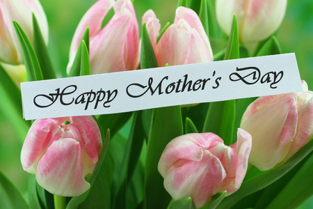Happy Mother s Day card with pink tulips Stock Photo
