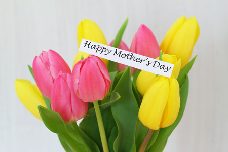 Happy Mother s Day card with colourful tulips Stock Photo