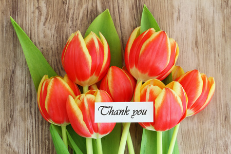 Thank you card with red and yellow tulips photo
