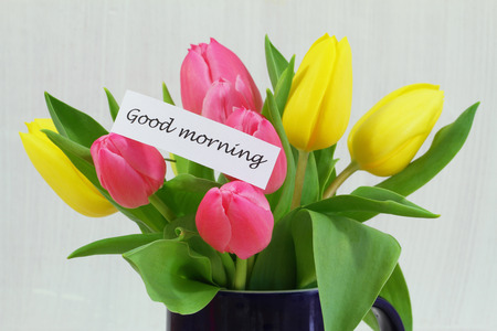 good morning: Good morning card with colorful tulips
