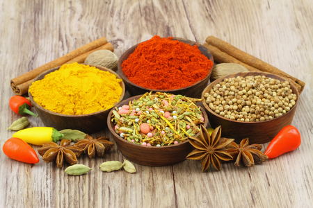 Selection of Indian spices, close up photo