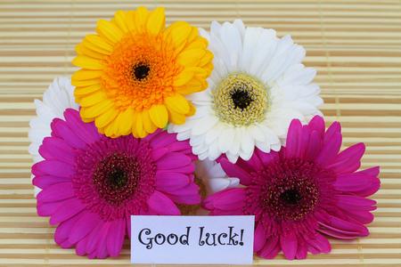 buena suerte: Buena suerte con nota coloridas gerberas