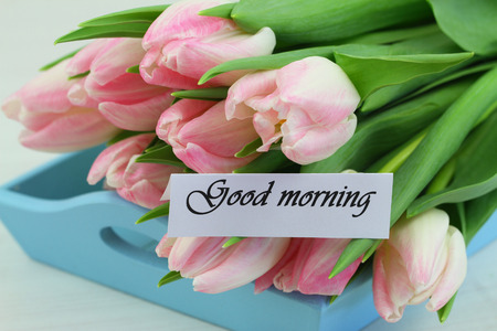 good morning: Good morning card with pink tulips