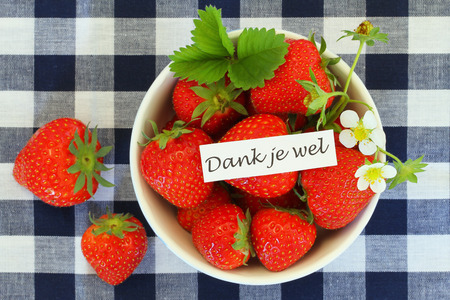 dank: Dank je wel card, which means thank you in Dutch, with bowl of fresh strawberries