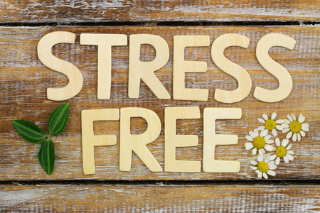 free sign: Stress free written with wooden letters on rustic wooden surface with fresh chamomile flowers Stock Photo