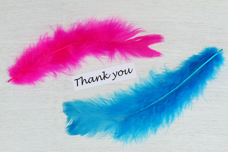 blue you: Thank you card with pink and blue feathers
