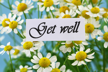 get well: Get well card with chamomile flowers