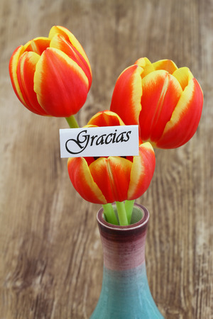 woodenrn: Gracias card (which means thank you in Spanish) with red and yellow tulips