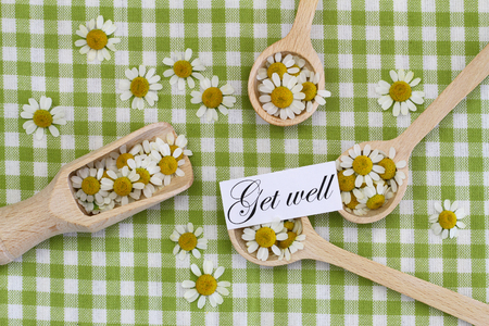 get well: Get well card with chamomile flowers on wooden spoons
