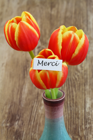 merci: Merci card (which means thank you in French) with red and yellow tulips Stock Photo