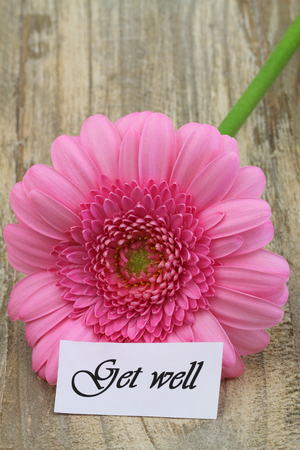 ink well: Get well card with pink gerbera daisy on wooden surface Stock Photo