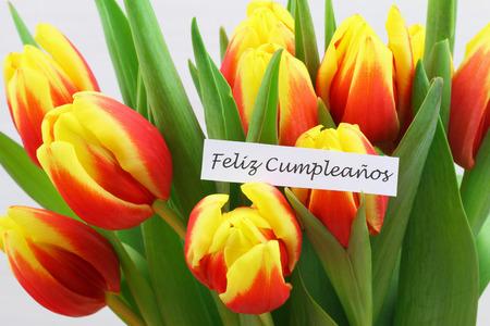 Feliz cumpleanos Happy birthday in Spanish card with colorful tulips Stock Photo