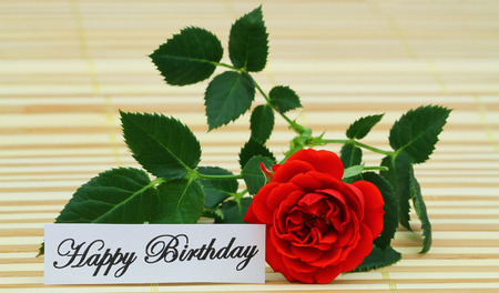wild rose: Happy Birthday card with red wild rose