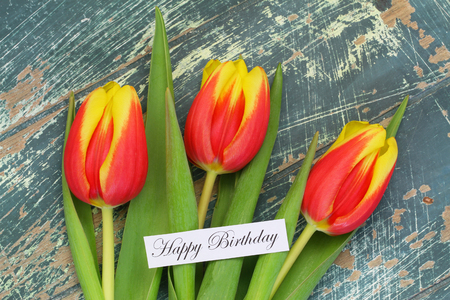 tulip: Happy Birthday card with red and yellow tulips