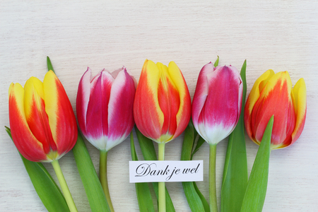 bouquet fleurs: Thank you with colorful tulips